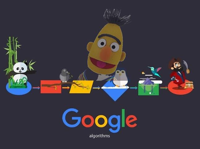 5 Claves que debes saber de la actualización Google Bert